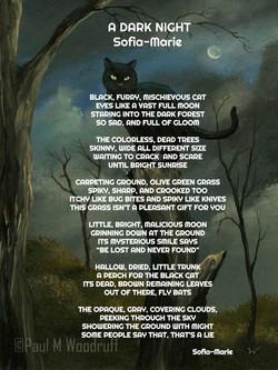 A Dark Night by Sofia