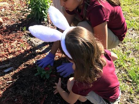 Nature and Montessori