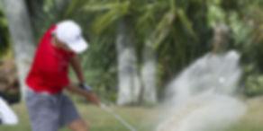 Treasure Coast Golf Club Real Estate for sale