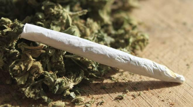 medical marijuana to treat crohns
