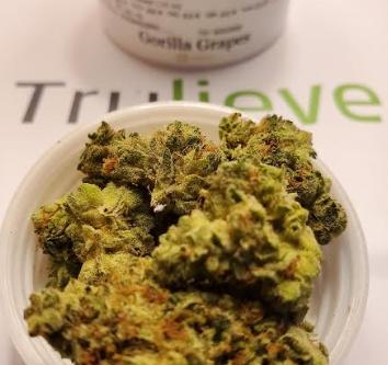 Gorilla Grapes Strain TruFlower Reviews   Trulieve
