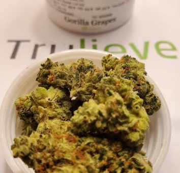 Gorilla Grapes Strain TruFlower Reviews | Trulieve