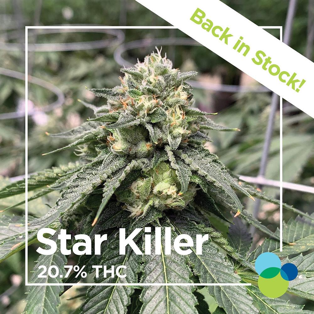 Liberty Health Sciences Flower - Star Killer