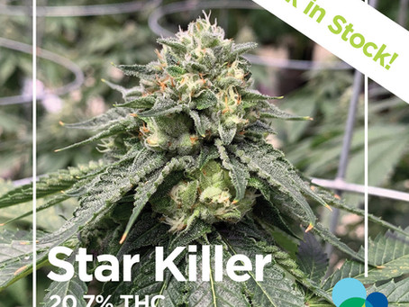 Liberty Health Sciences Flower Reviews | Star Killer Strain