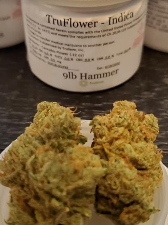 9LB Hammer strain review from Trulieve dispensary