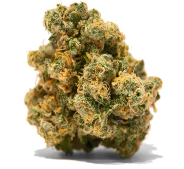 Top 10 Medical Marijuana Strains In Florida - Trulieve Products