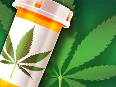 Florida Dispensaries May Have To Stop Processing Medical Marijuana