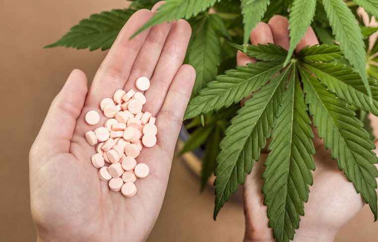 Marijuana vs Opiods - Grow marijuana
