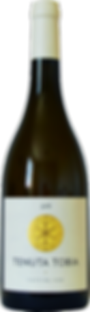 Coste del Vivo. Toby Owen winemaker