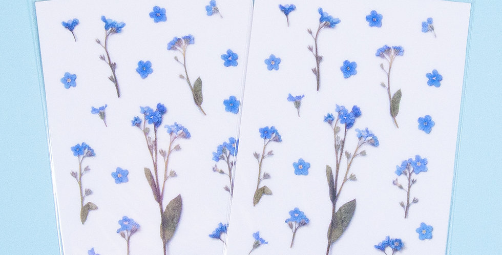 APPREE Forget Me Not Sticker