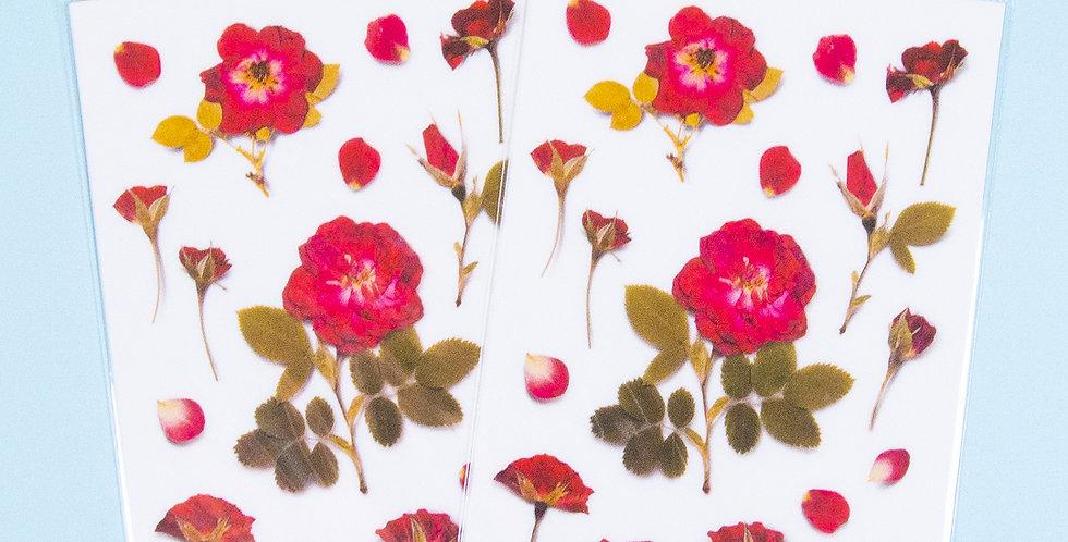 APPREE Mini Rose Sticker