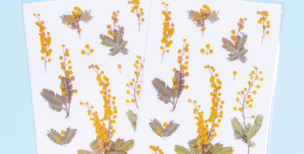 APPREE Mimosa Sticker