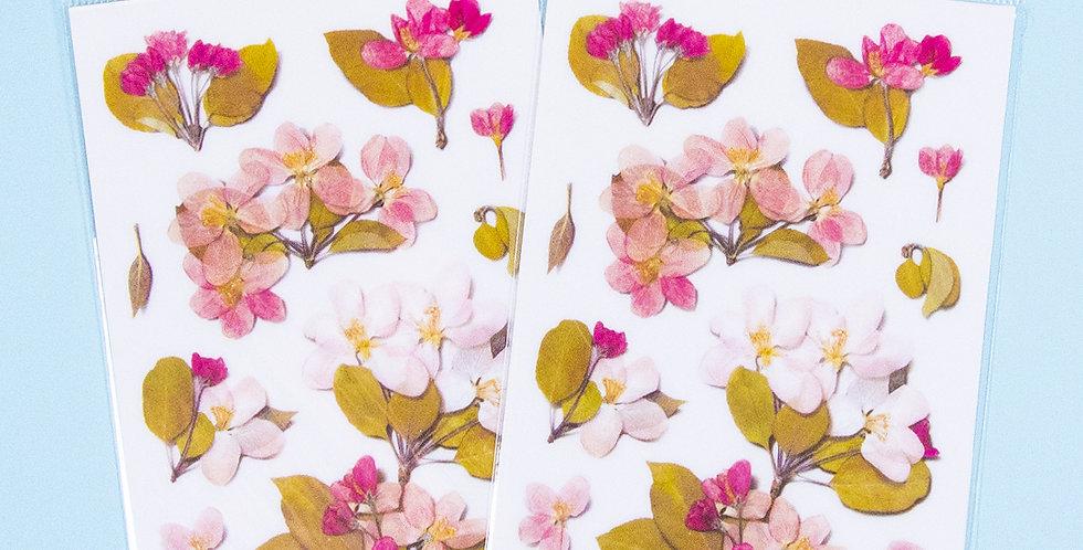 APPREE Apple Blossom Sticker
