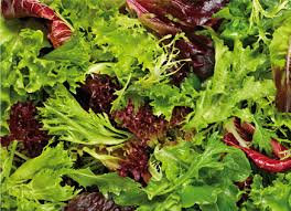 1.5kg Salad mix