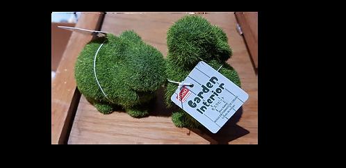 Small moss rabbits