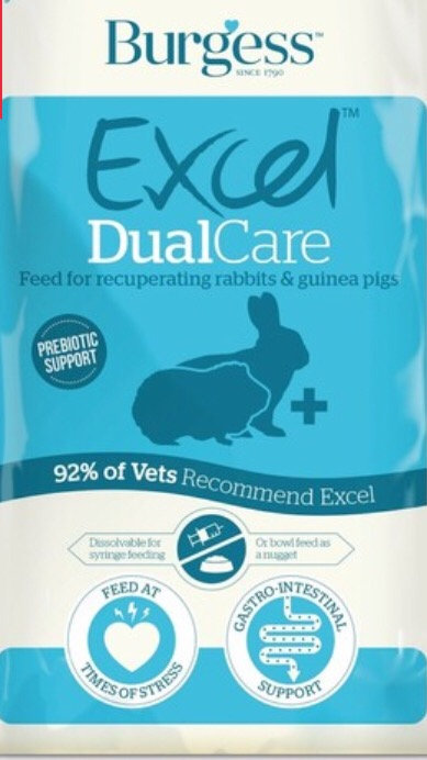 Burgess Excel DualCare Recovery Diet (60 g)