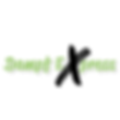 Dampf Express Logo Gro0