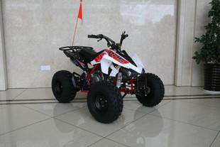 ATV125MAX.JPG
