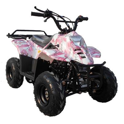 ATV110-6S