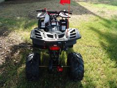ATV125U8-sp6.jpg