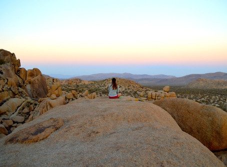December Goals, Pictures From Joshua Tree and Red Rock Canyon, and Life Update