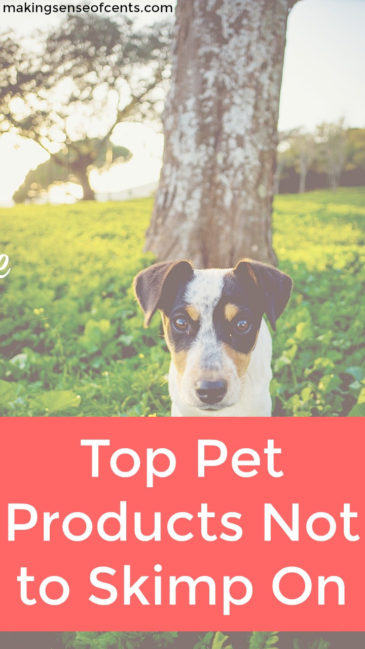 Check out this list of top pet products you should not skimp out on.