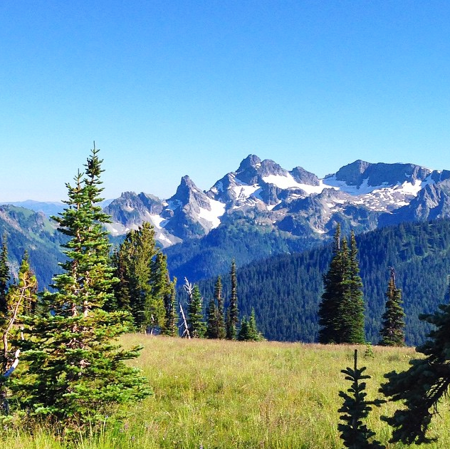 Mount Rainier National Park 2
