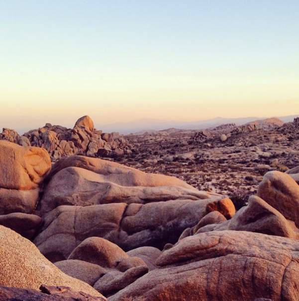 Joshua Tree National Park Picture