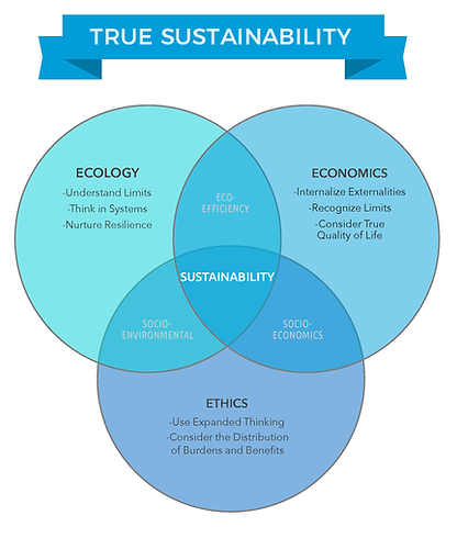 venn 3 introduction_Page_2.png