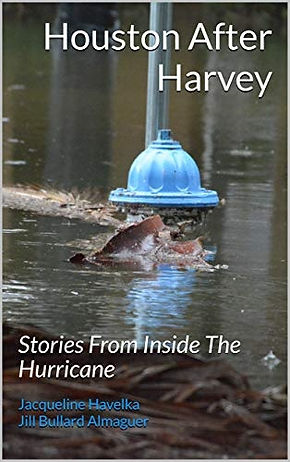 Houston After Harvey Book Cover.jpg