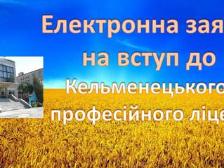 Заява на вступ до Кельменецького професійного ліцею