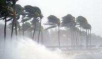 Tropische storm
