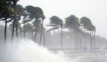 Tropical Storm