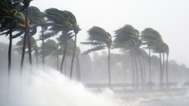 Hurricane Delta Tax Relief