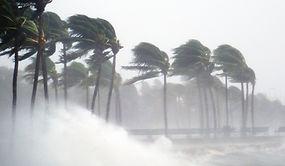 熱帯性の嵐