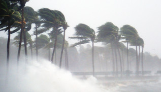 There is very little progress on reducing climate disruption and environmental degradation, when extreme weather events have risen dramatically over the past two decades.