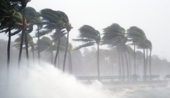 Brace for insurance shock: Windstorm premiums are soaring in Florida again