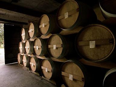 Domaine de Bordeneuve - its ancient ageing cellars...