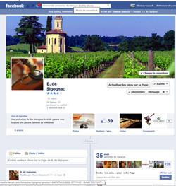 Facebook Baron de Sigognac