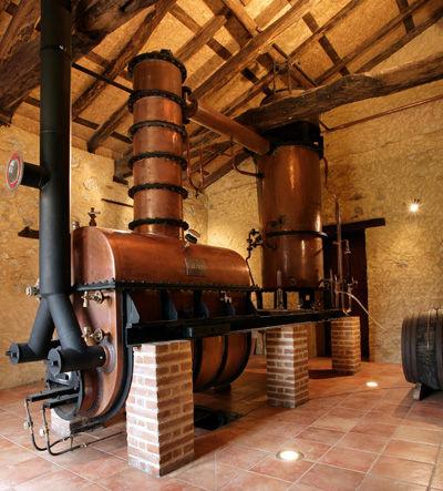 Distillery - Baron de Sigognac