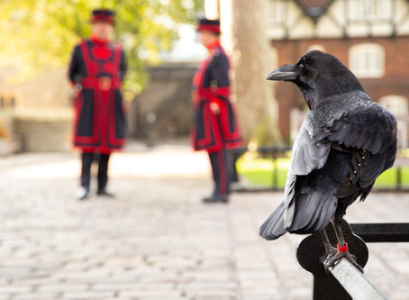 Be a VIP at the Tower of London
