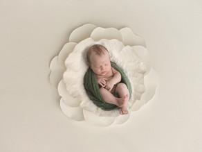 Mael (4 Wochen jung) - Newbornshooting in Frick