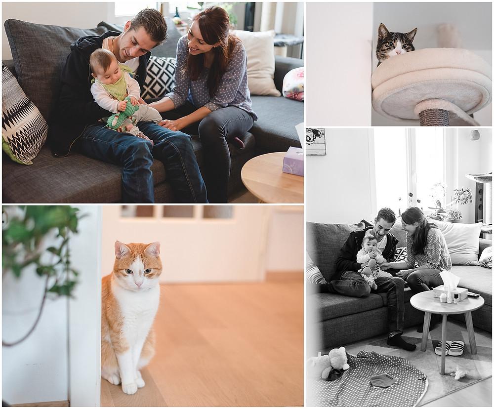 Familien Homestory in Aarau