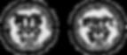 eryt-logo.png