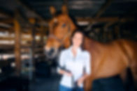 Horse massage, equine massage, equine body work, equine sports massage, horse sports massage, cold backed, equine performance problems, horse sore back, horse stiff neck, chiropractor, horse physical therapist, horse physical therapist.