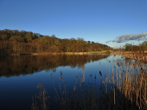 Brockholes Nature Reserve near Preston, Lancashire,UK - February 2016