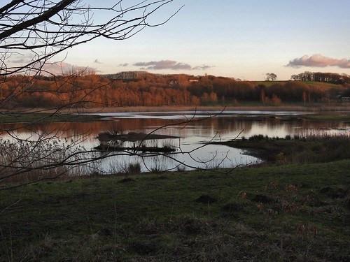 Brockholes Nature Reserve near Preston, Lancashire,UK - February 2016