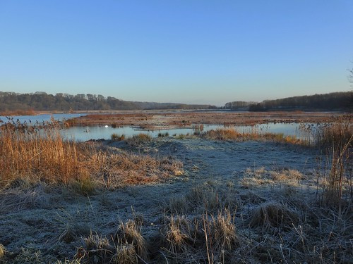 A Cold Early Winters Morning at Brockholes Nature Reserve near Preston, Lancashire, England - December 2016