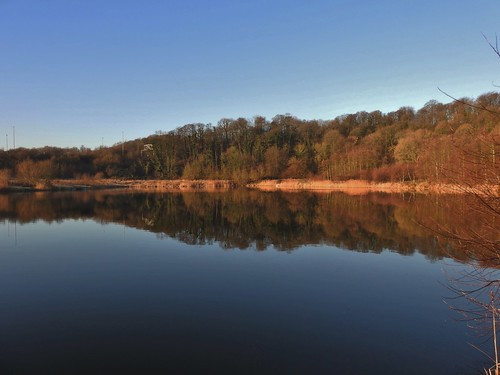 Brockholes Nature Reserve near Preston, Lancashire, England - December 2016