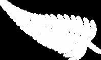 transparent bg (3).png